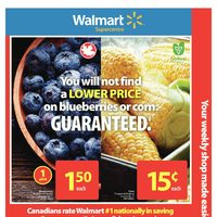 Walmart - Supercentre - Everybody Back To Campus Flyer