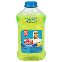 Febreze Air Effects Febreze Auto Air Fresheners or Mr. Clean All Purpose Cleaner
