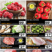 Lococos - Select Specials Flyer