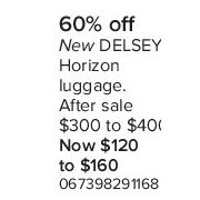 Delsy Horizon Luggage  - $120.00-$160.00 (60% off)