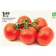 Fresh Cluster Tomatoes - $1.49/lb